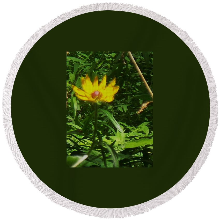 Flower Round Beach Towel featuring the photograph Yellow Flower by Eric Schiabor