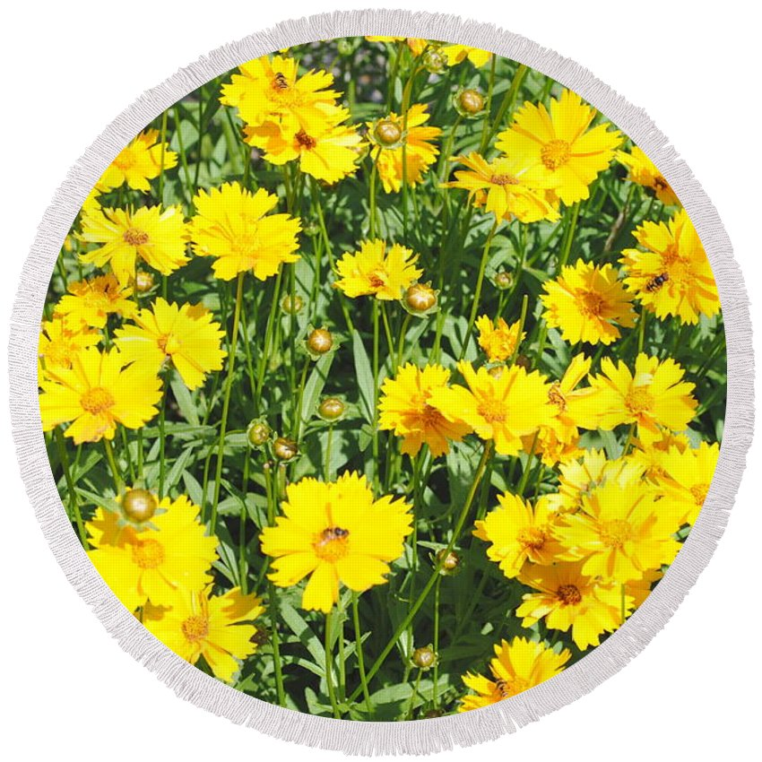 Yellow Round Beach Towel featuring the photograph Yellow Flowers by Jost Houk