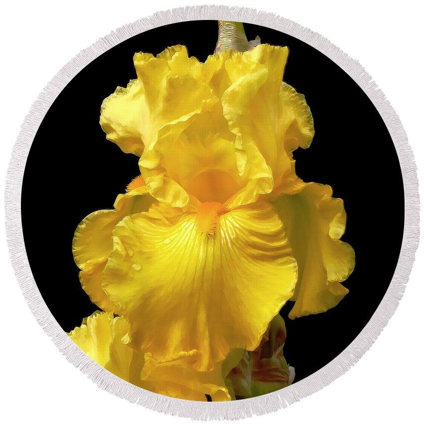 Iris Round Beach Towel featuring the photograph Yellow Iris Flower Still Life by Jennie Marie Schell