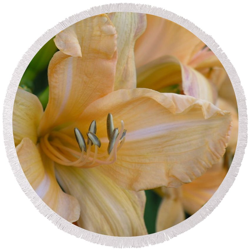 Yellow Round Beach Towel featuring the photograph Yellow Lilly by Diane Greco-Lesser
