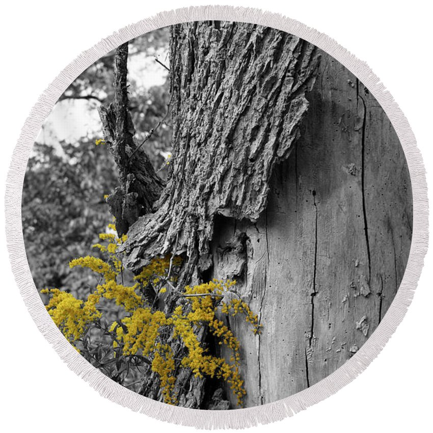 Bark Round Beach Towel featuring the photograph Yellow Tufts by Dylan Punke