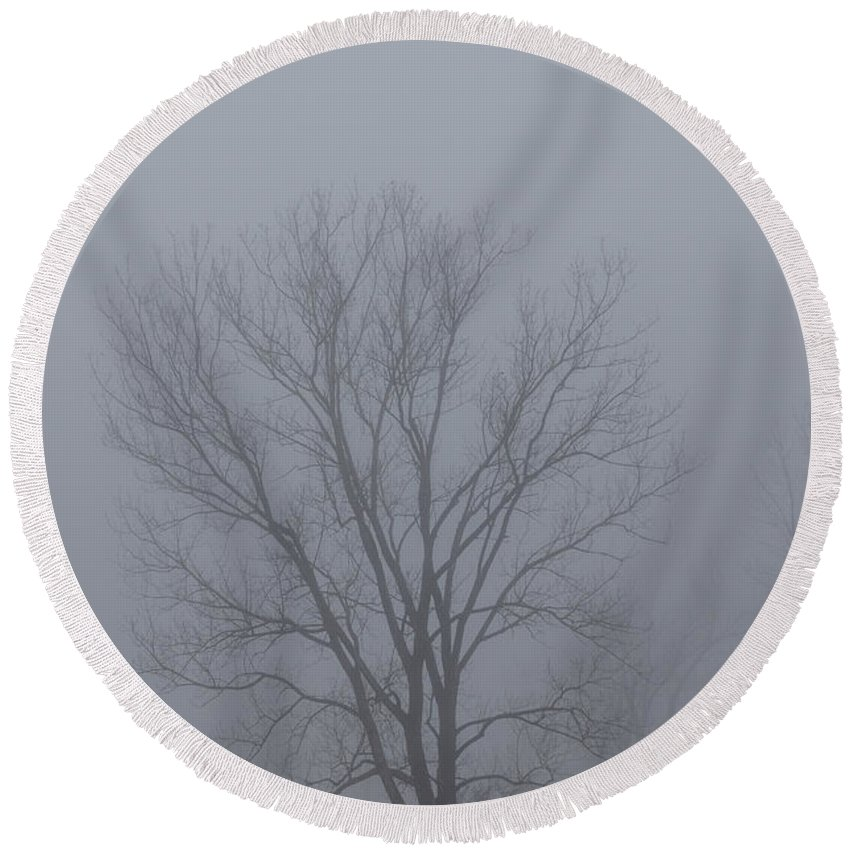 Forest Round Beach Towel featuring the photograph Yesterday Morning On The Way To Work by Guy Whiteley
