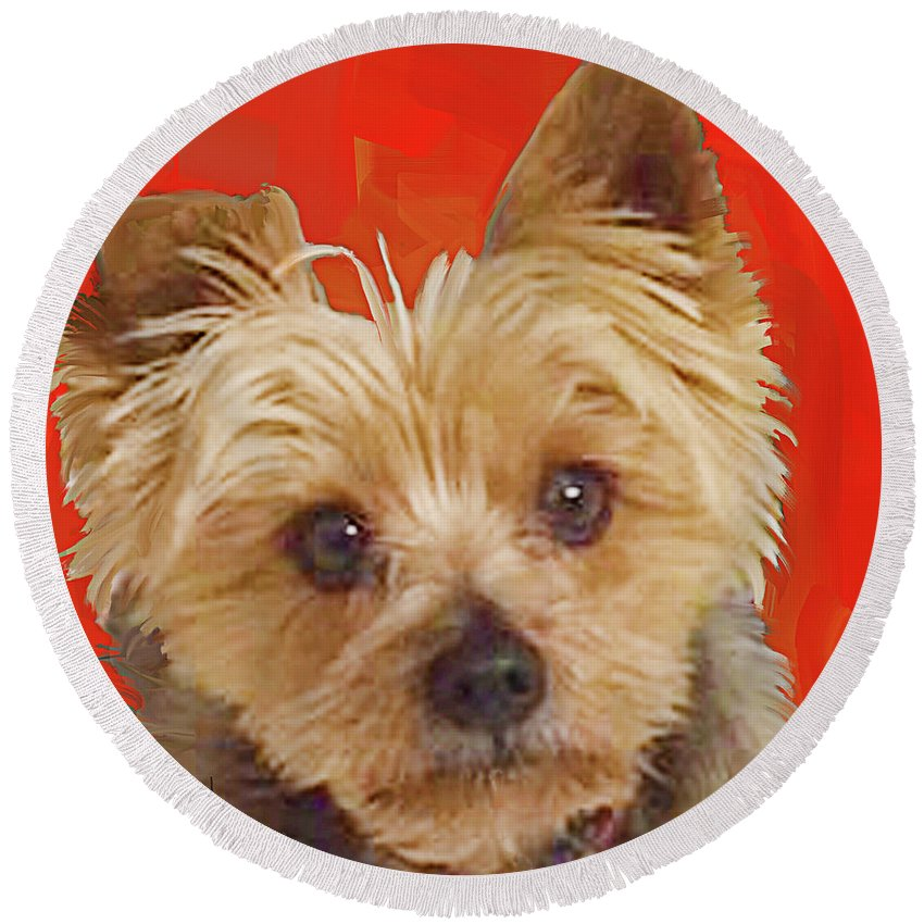 Yorkie Round Beach Towel featuring the painting Yorkie 10 by Jackie Jacobson