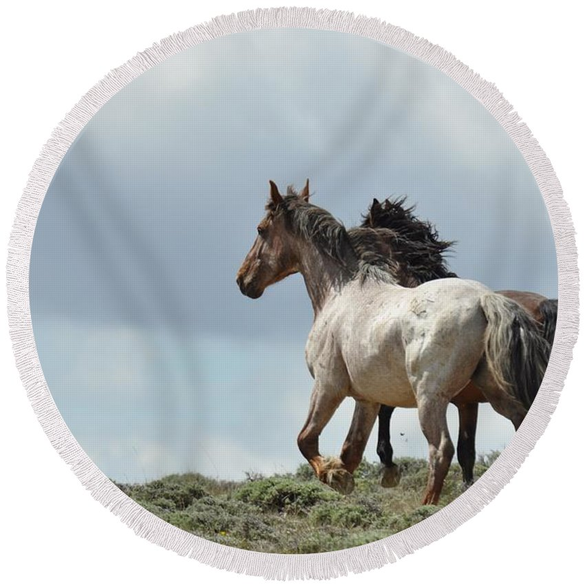 Wild Horses Round Beach Towel featuring the photograph You Will Never Catch Us by Frank Madia