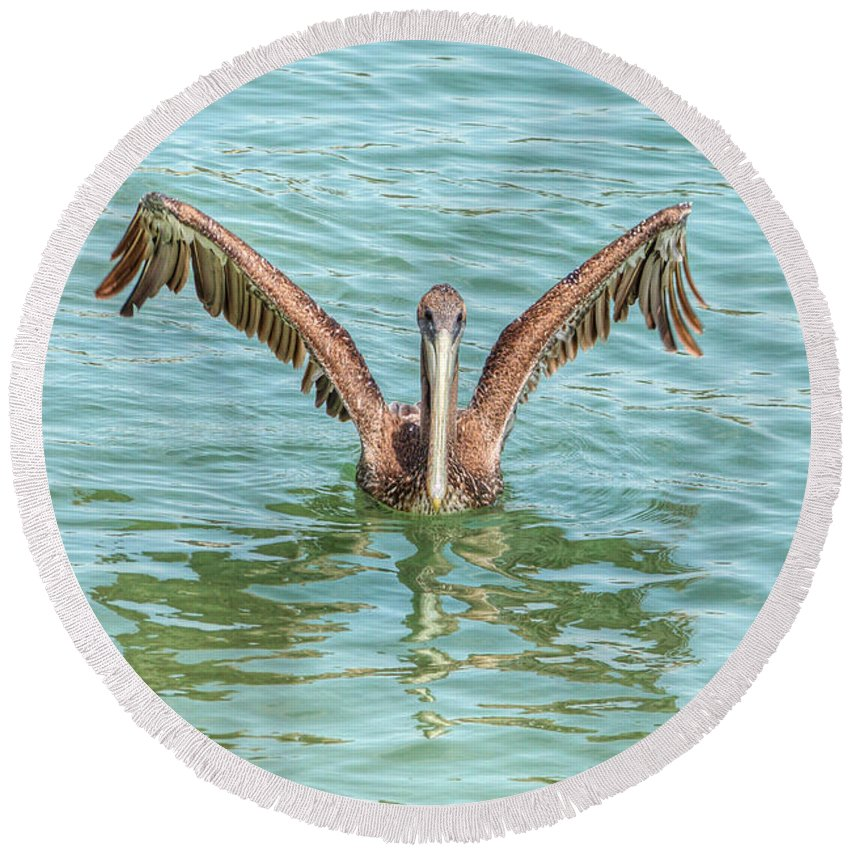 Pelican Round Beach Towel featuring the photograph Young Pelican 0087 by Kristina Rinell