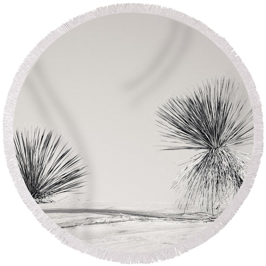 Yucca Round Beach Towel featuring the photograph yucca in White sands by Ralf Kaiser