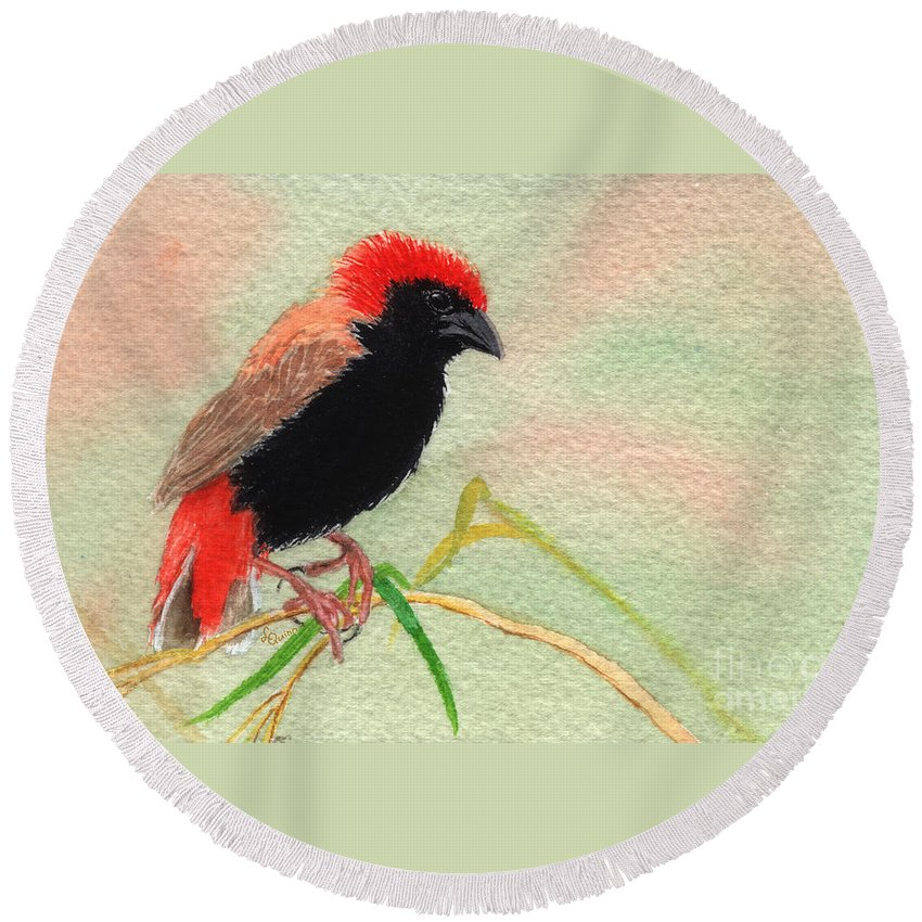 Bird Round Beach Towel featuring the painting Zanzibar Red Bishop by Lynn Quinn