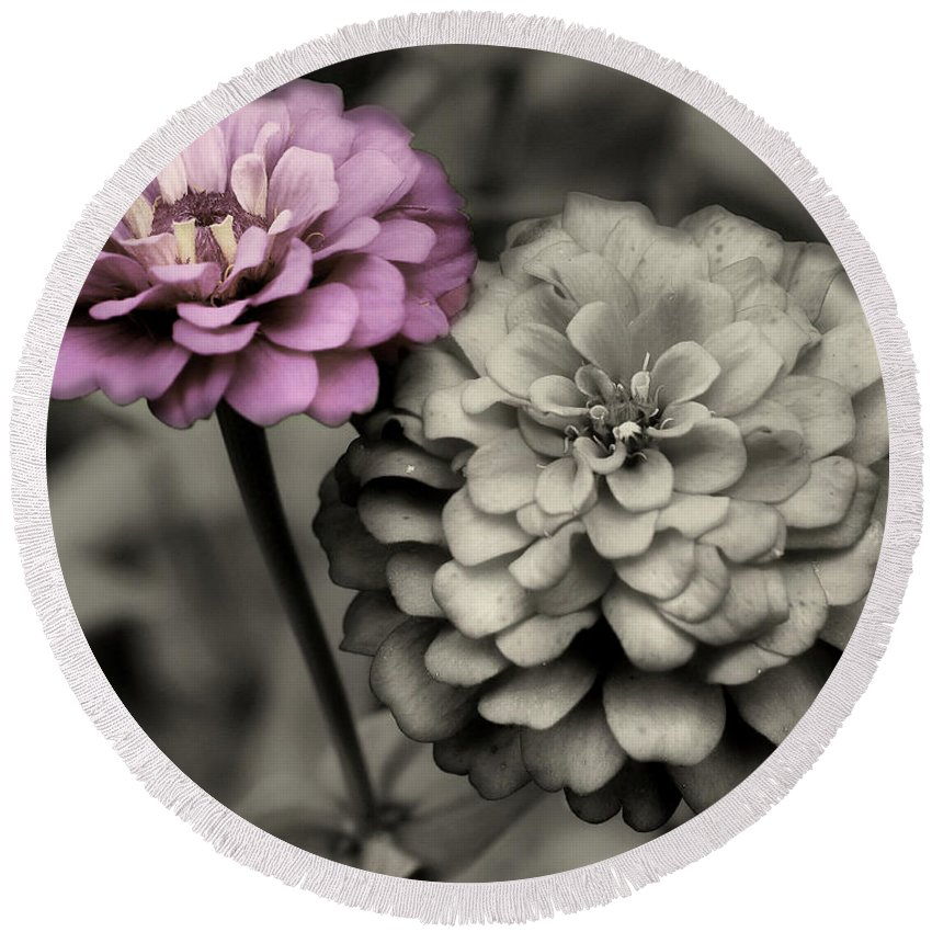 Zinnia Round Beach Towel featuring the photograph Zinnia Flower Pair by Smilin Eyes Treasures
