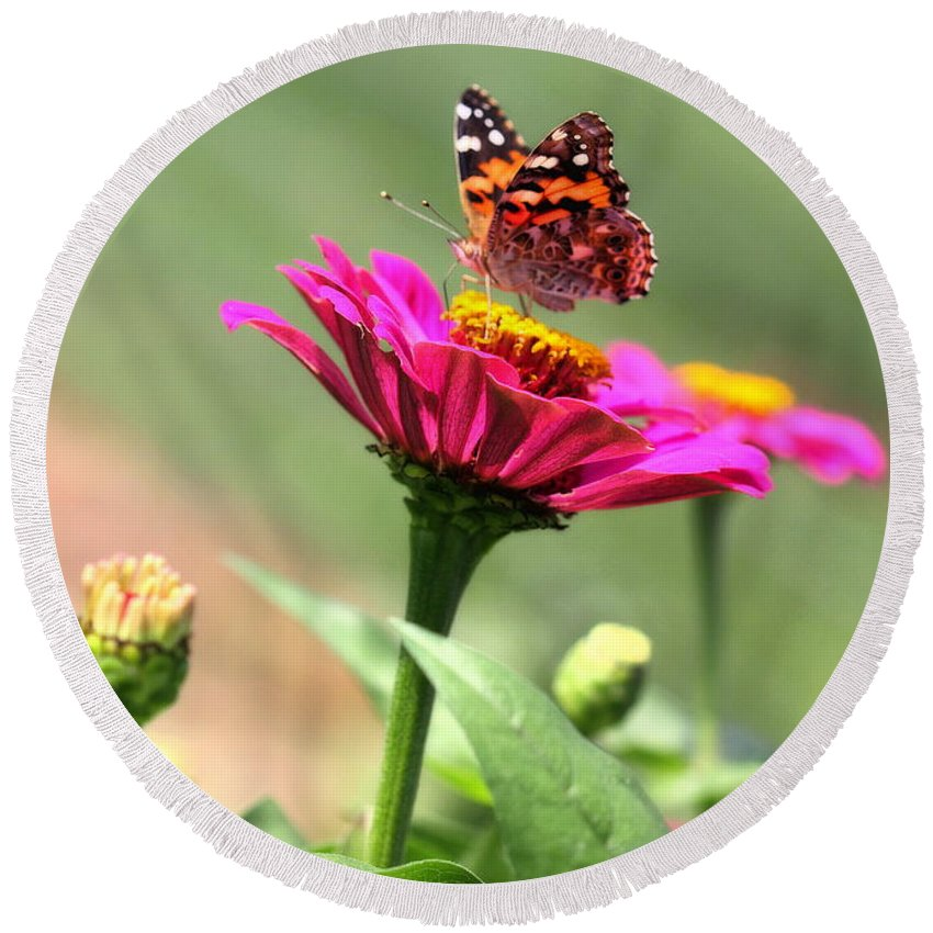 White Round Beach Towel featuring the photograph Zinnia Visitor by Angela Rath