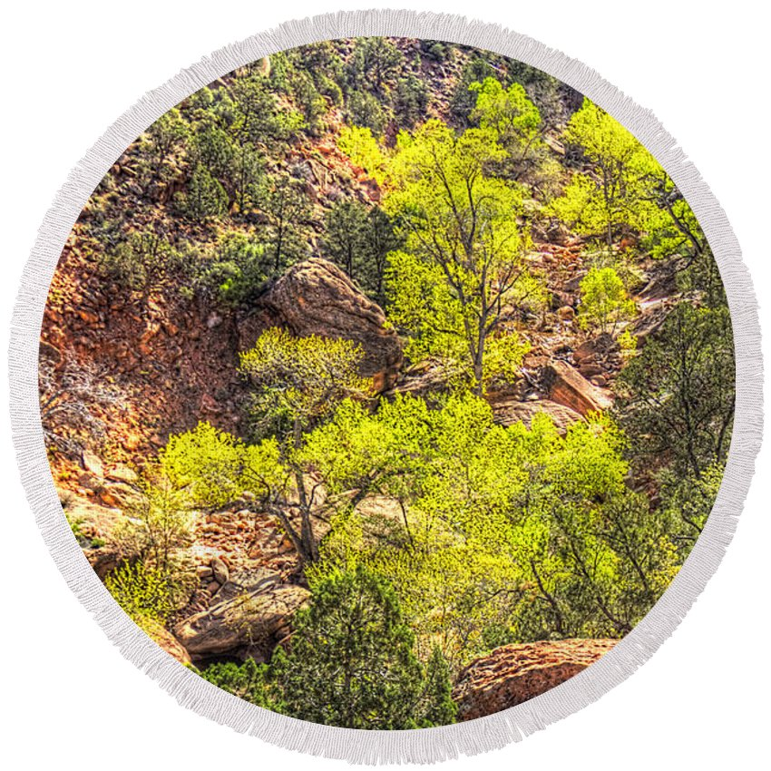 Pictorial Round Beach Towel featuring the photograph Zion National Park Small Tributary Of The Virgin River by Roger Passman