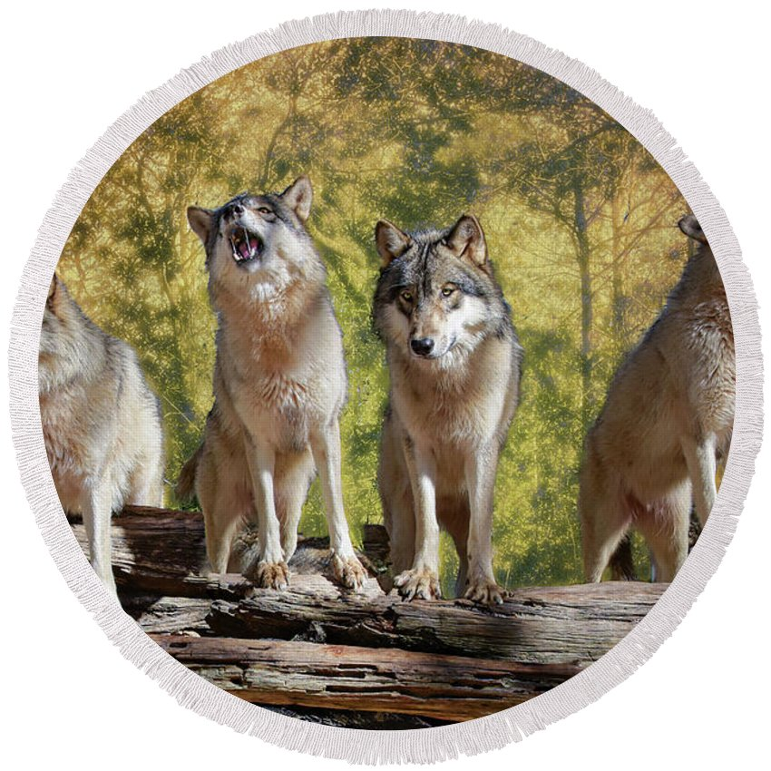 Wolf Round Beach Towel featuring the photograph Howling Wolves by Jeannee Gannuch