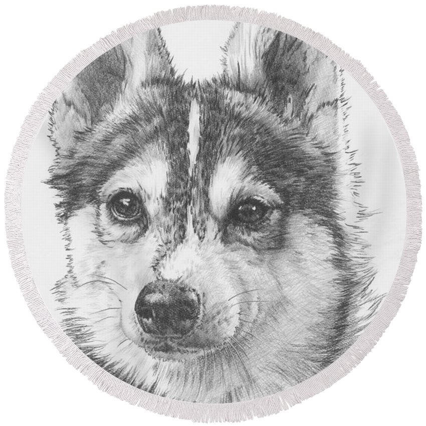 Designer Dog Round Beach Towel featuring the drawing Alaskan Klee Kai by Barbara Keith