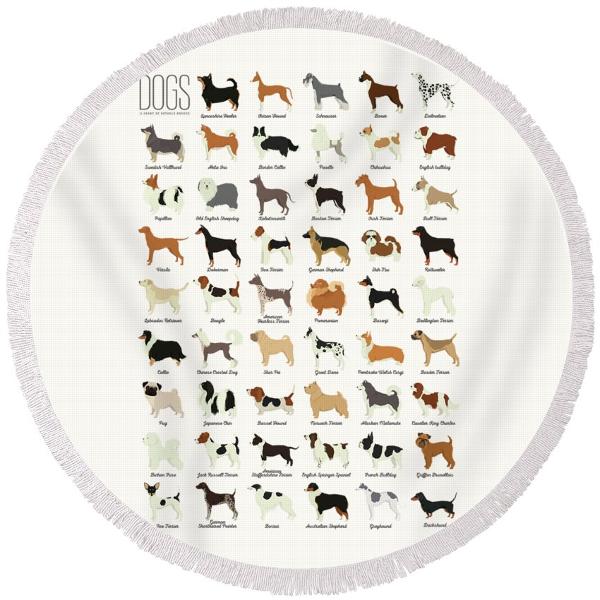 Dogs Round Beach Towel featuring the digital art Dog Breeds by Zapista OU