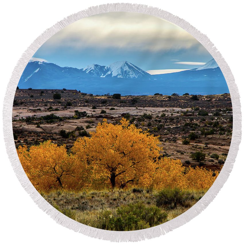 Cottonwoods Round Beach Towel featuring the photograph Golden Cottonwoods by Stephen Whalen