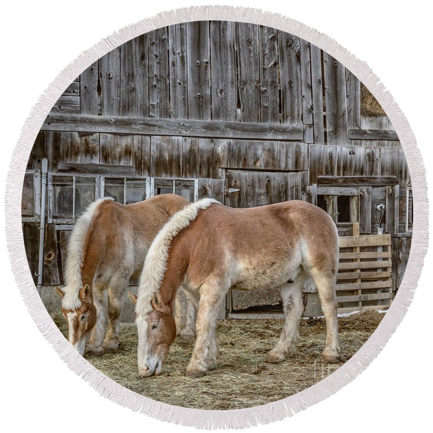 Horse Round Beach Towel featuring the photograph Horses By The Barn Sugarbush Farm by Edward Fielding