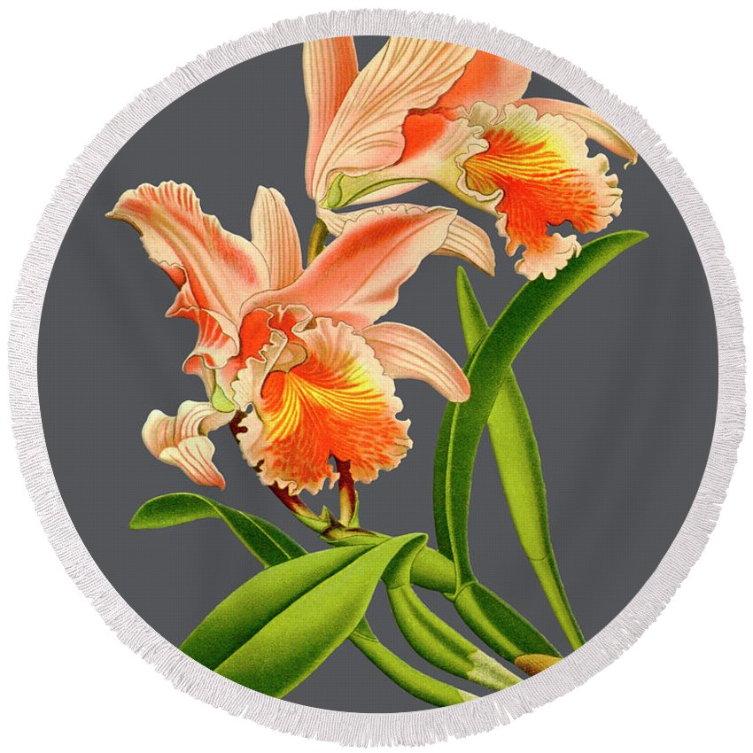 Vintage Round Beach Towel featuring the digital art Orchid Old Print by Baptiste Posters