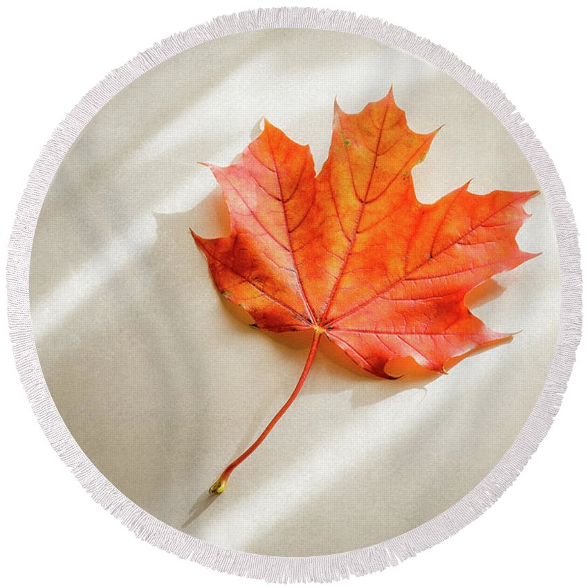 Designs Similar to Red And Orange Maple Leaf