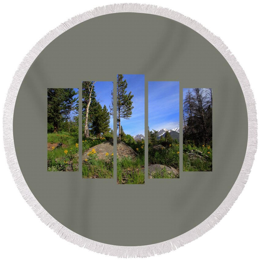 Set 51 Round Beach Towel featuring the photograph Set 51 by Shane Bechler