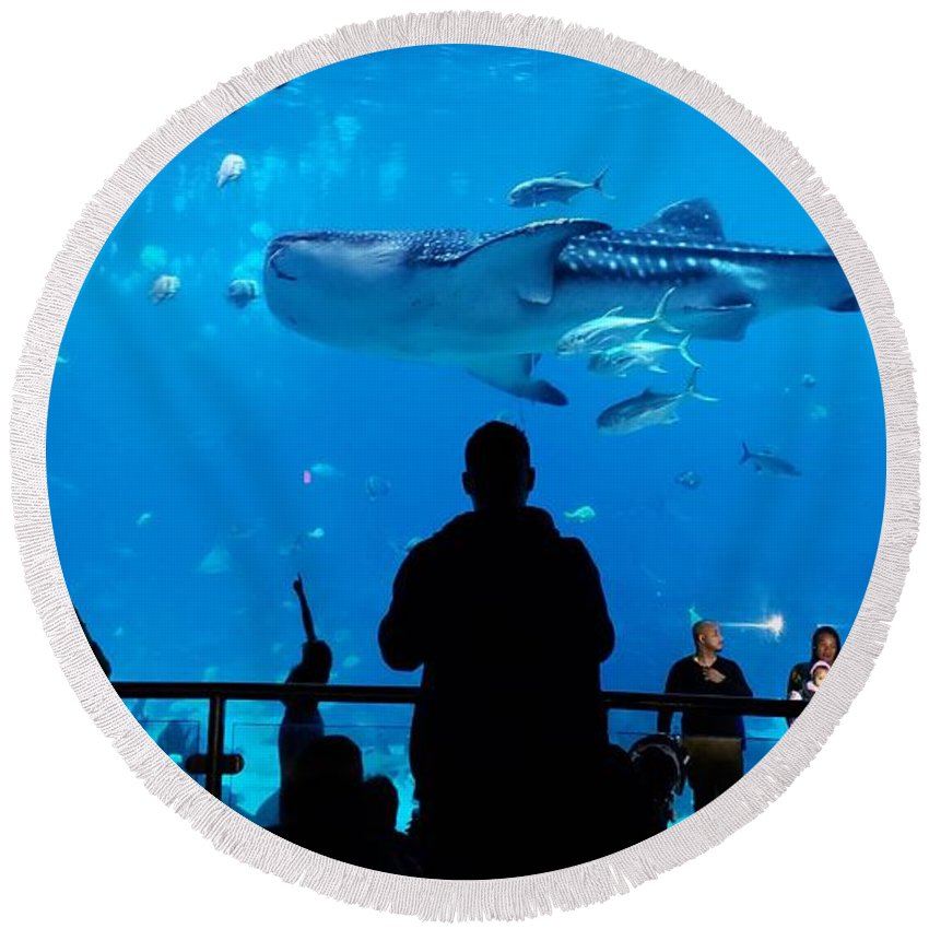 Whale Shark Round Beach Towel featuring the photograph Watching The Whale Shark by Donna Brown