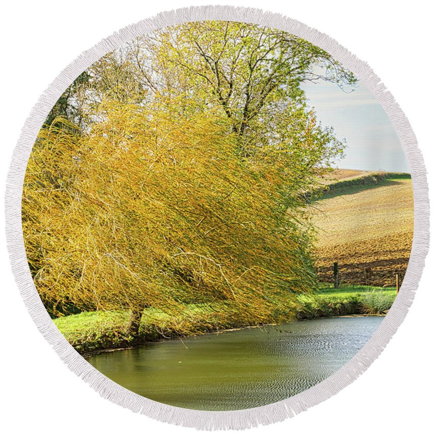 Wind Round Beach Towel featuring the photograph Wind In The Willow by Michael Briley
