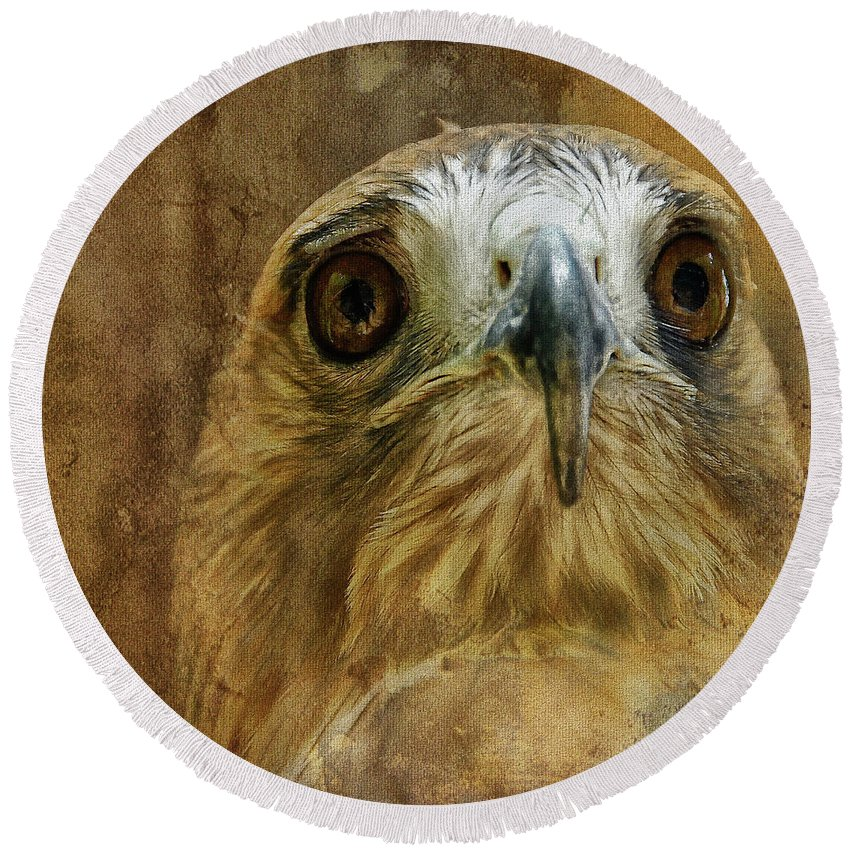 Hawk Round Beach Towel featuring the photograph Your Majesty by Lois Bryan