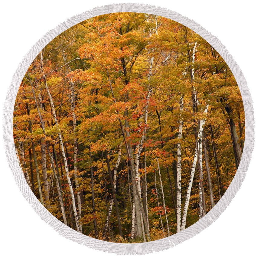 3scape Round Beach Towel featuring the photograph Autumn Glory by Adam Romanowicz