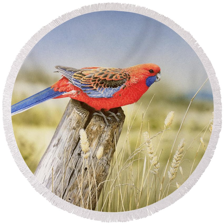 Bird Round Beach Towel featuring the painting Colour and Light - Crimson Rosella by Frances McMahon