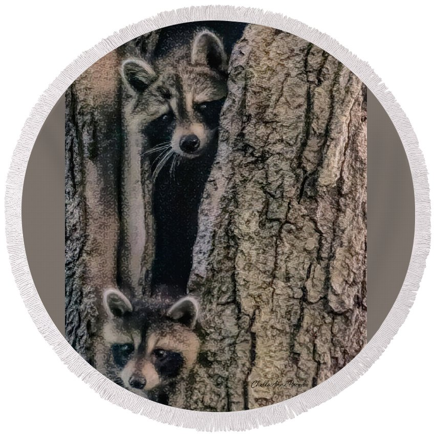 Racoon Round Beach Towel featuring the photograph Hello Neighbor by ChelleAnne Paradis