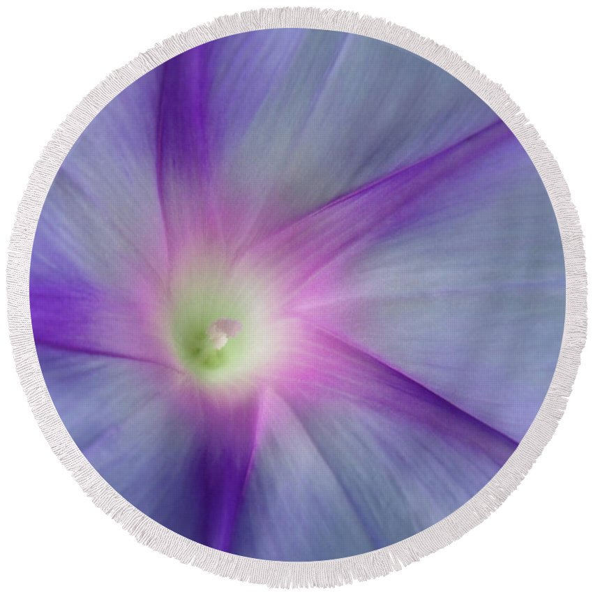 Round Beach Towel featuring the photograph Morning Glory Star by ChelleAnne Paradis