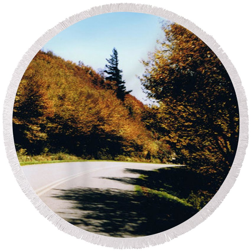 High In The Great Smoky Mtn. As You Round A Curve Stands This Noble Spruce. Round Beach Towel featuring the photograph Single Spruce by Seth Weaver