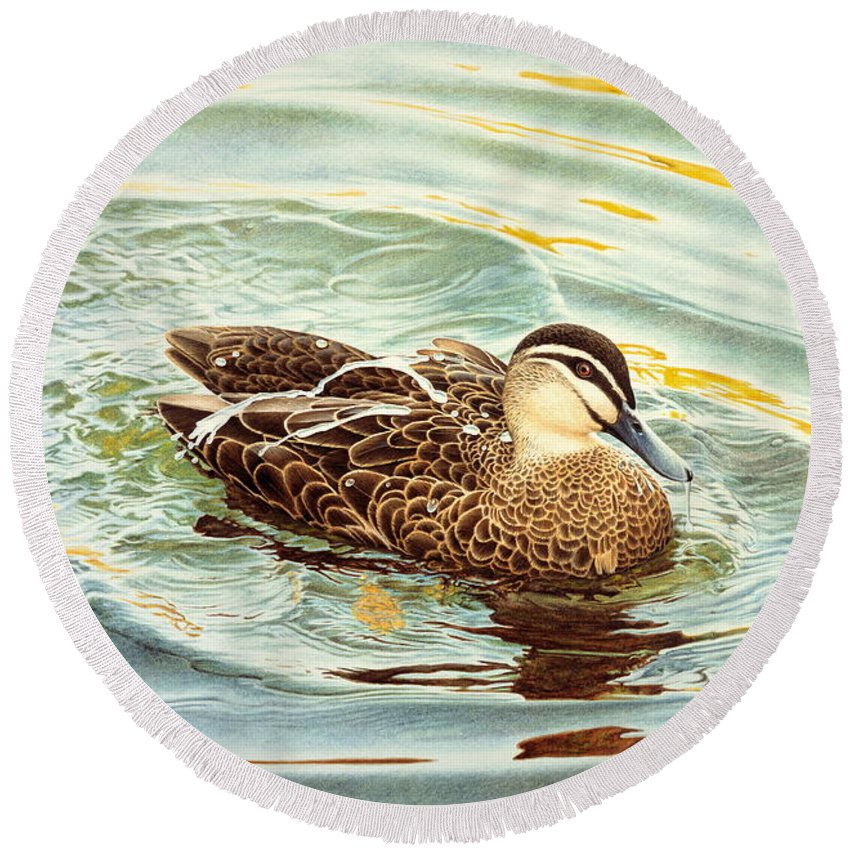 Watercolour Birds Round Beach Towel featuring the painting Splash - Pacific Black Duck by Frances McMahon