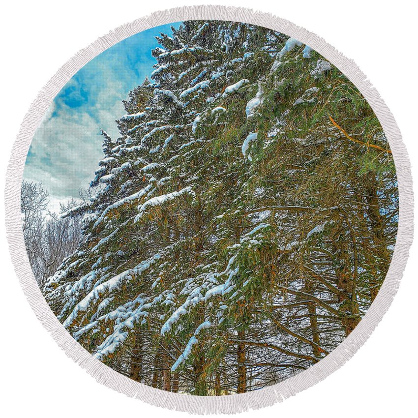 Nature Round Beach Towel featuring the photograph Winter trees by M Forsell
