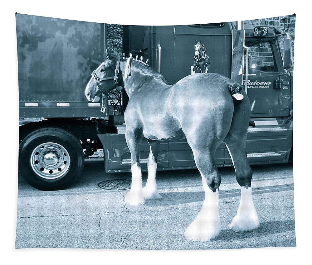 Draft Horse Tapestry featuring the photograph Clydesdale In Black And White by Alice Gipson