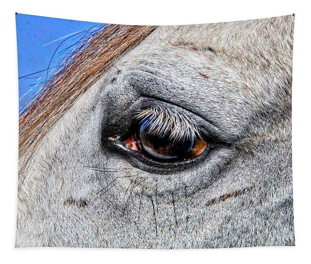 Horse Tapestry featuring the photograph Eye Of A Horse by Alice Gipson