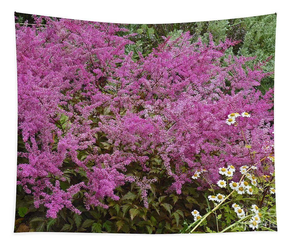 Alaska Tapestry featuring the photograph Jewell Garden Skagway Alaskaak396l by Howard Stapleton