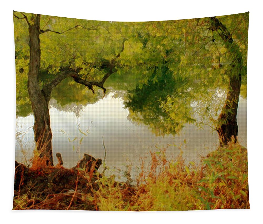 Nature Tapestry featuring the photograph Old Country by Linda Sannuti