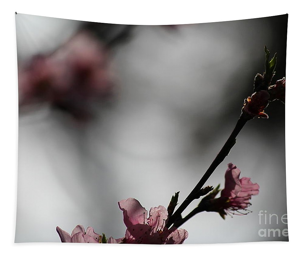 Peach Blossom Tapestry featuring the photograph Peach Blossom II by Karin Everhart