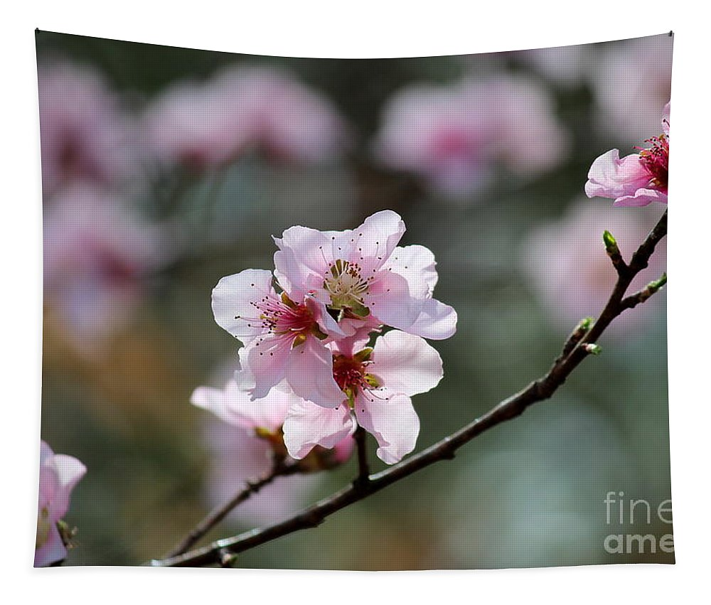 Peach Blossom Tapestry featuring the photograph Peach Blossoms I by Karin Everhart