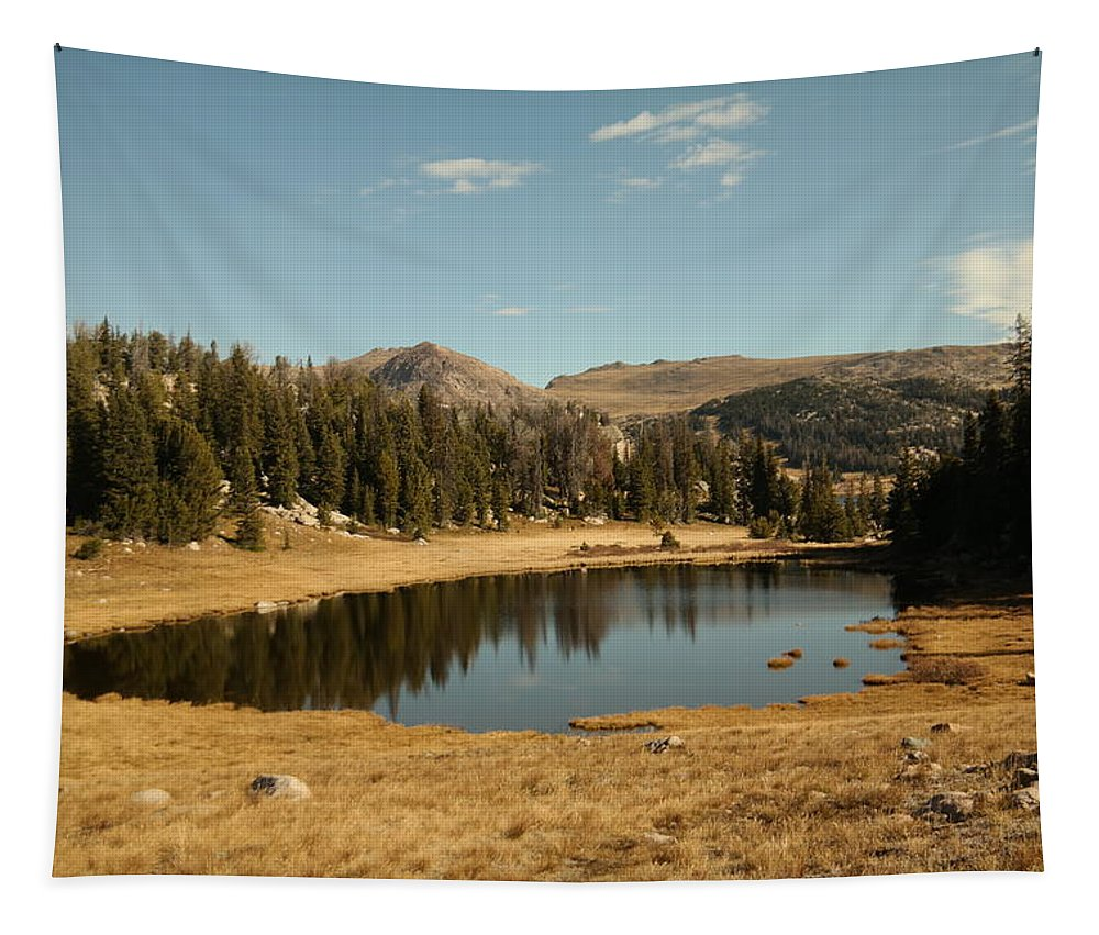 Lake Tapestry featuring the photograph Alpine Lake by Jeff Swan