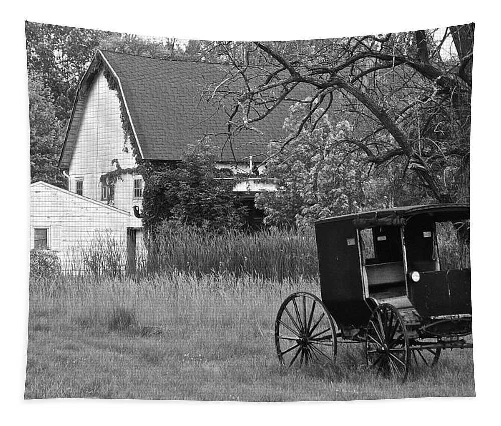 Amish Tapestry featuring the photograph Amish Living by Frozen in Time Fine Art Photography
