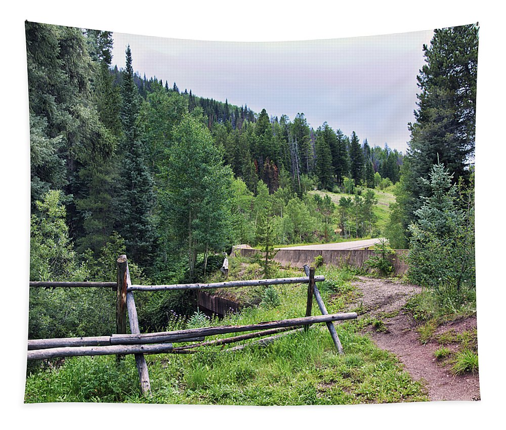 Aspen Trees Tapestry featuring the photograph Aspen Trees In Vail - Colorado by Madeline Ellis