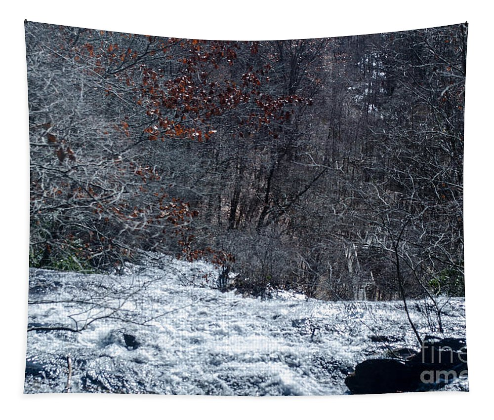 Trees Tapestry featuring the photograph At The Top by Donna Brown
