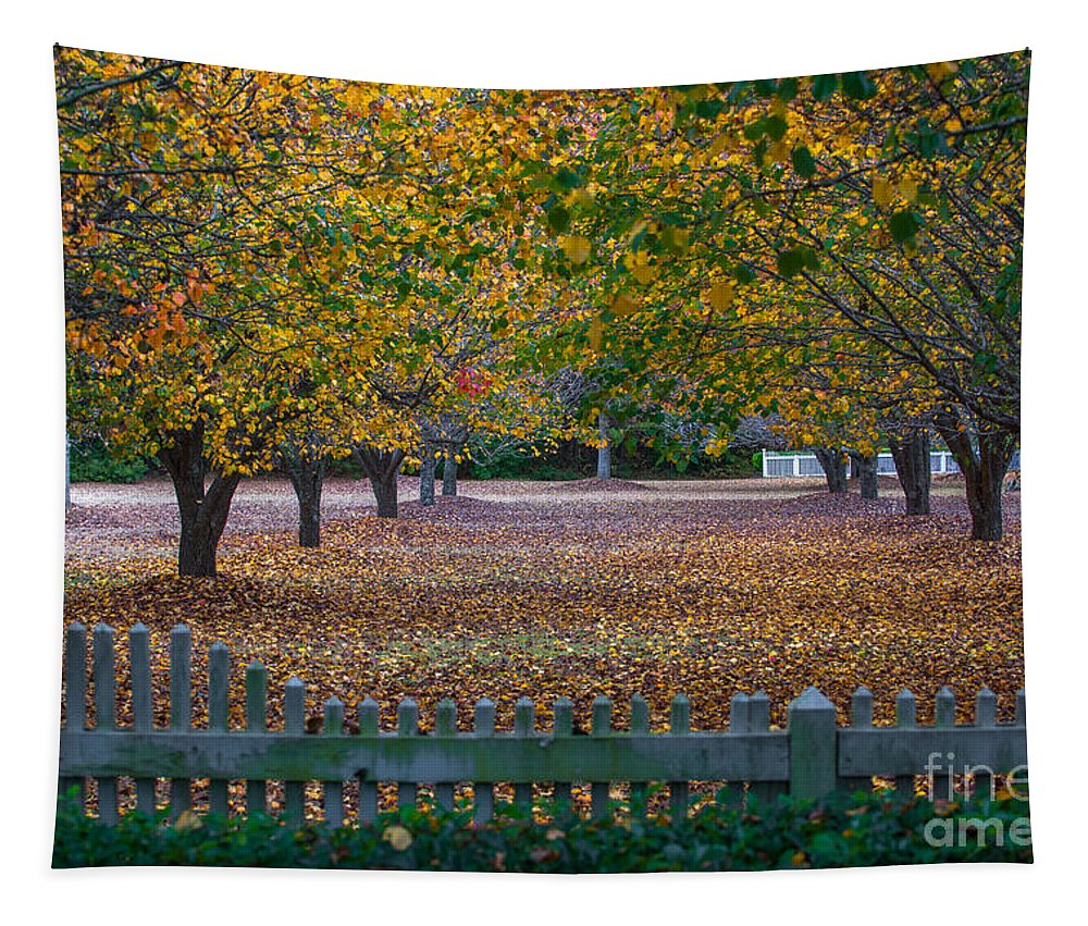 Autumn Tapestry featuring the photograph Autumn Splendor by Dale Powell