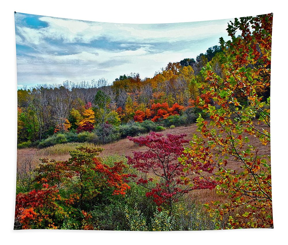 Autumn Tapestry featuring the photograph Autumn In Full Bloom by Frozen in Time Fine Art Photography