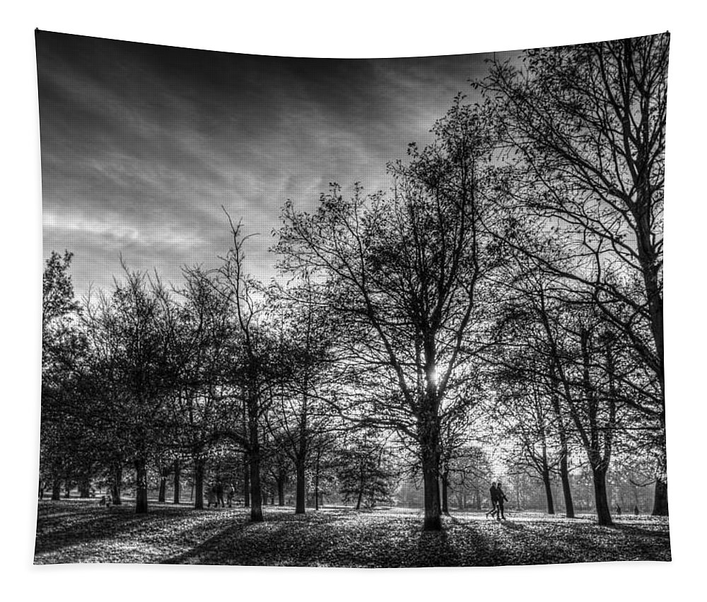 Autumn Tapestry featuring the photograph Autumn In London by David Pyatt