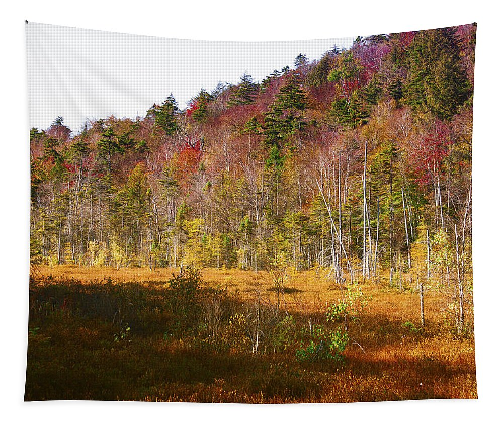 Adirondack's Tapestry featuring the photograph Autumn In The Adirondacks by David Patterson