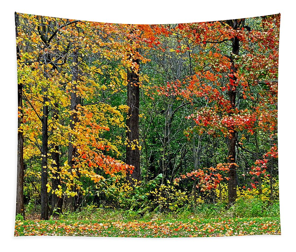 Autumn Tapestry featuring the photograph Autumn Landscape by Frozen in Time Fine Art Photography