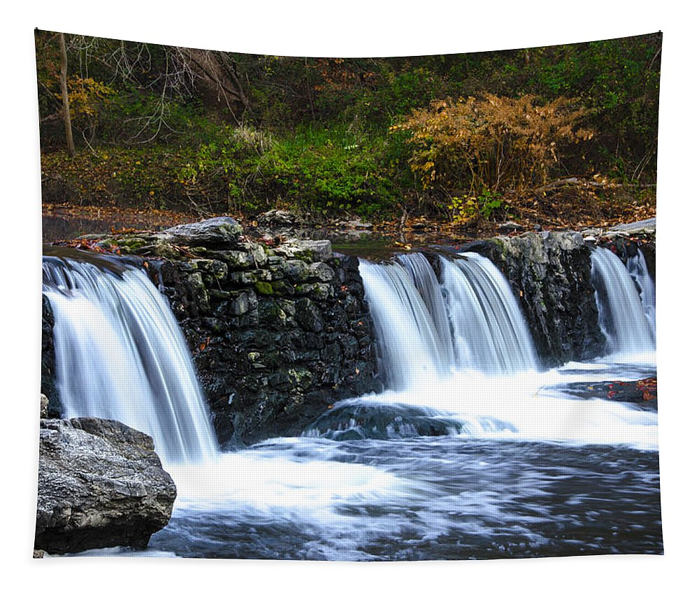Autumn Tapestry featuring the photograph Autumn Morning On The Wissahickon by Bill Cannon