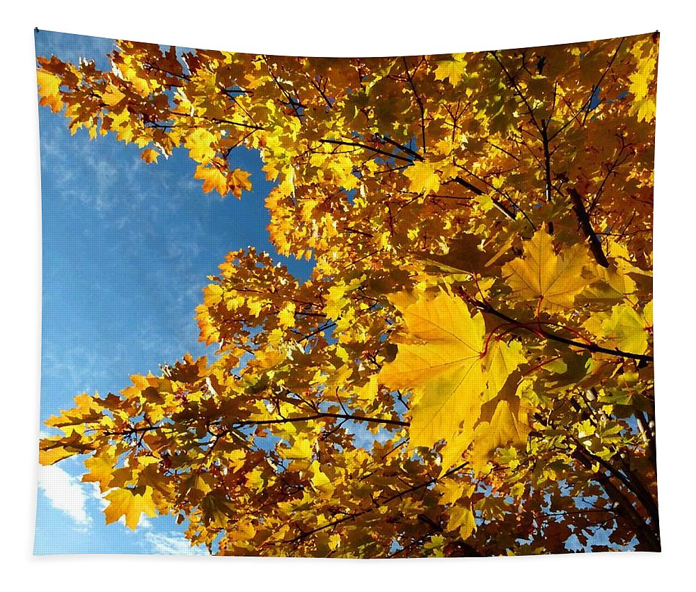 Autumn Splendor 9 Tapestry featuring the digital art Autumn Splendor 9 by Will Borden