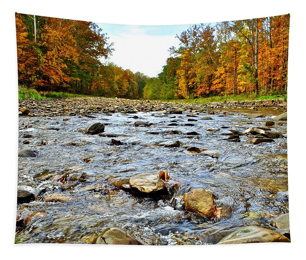 Landscape Tapestry featuring the photograph Babbling Brook by Frozen in Time Fine Art Photography